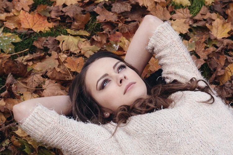 bois automne